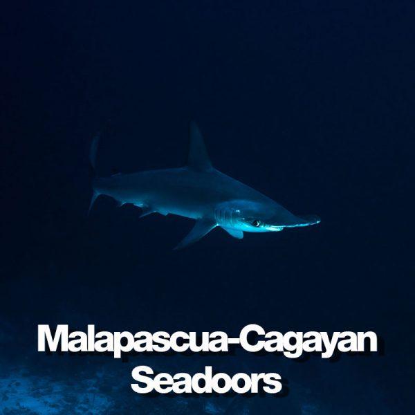 produit-malapascua-cagayan-