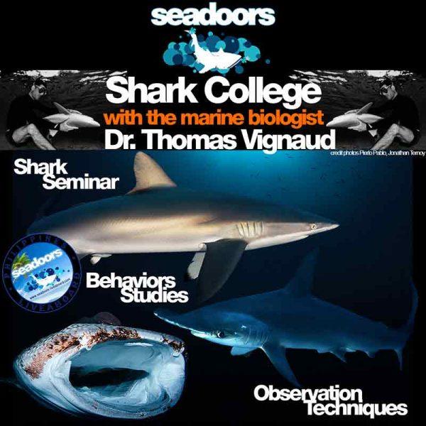 produit-shark-college-.jpg